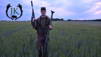 Bockjagd im Juni | Feld und Wald