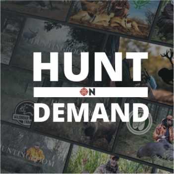 Hunt on Demand