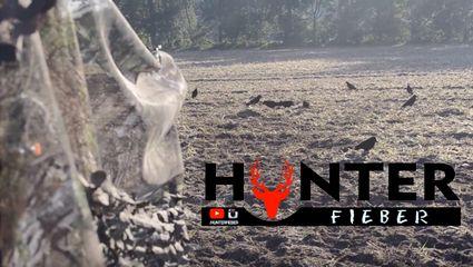 Krähenjagd 2.0 Hunterfieber202 (GoPro / Nikon5100d)