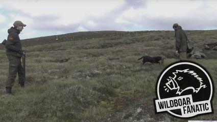 Flintenjagd in den Highlands von Schottland