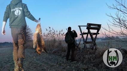 🦊 Winter Fuchsjagd in Brandenburg Teil 1/2