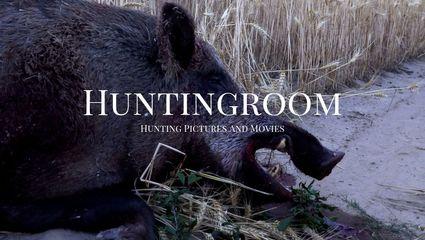 Weizenschweine - Nahkampf mit Keilern - Unterwegs mit den Hunter Brothers