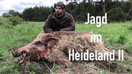 Jagd im Heideland II