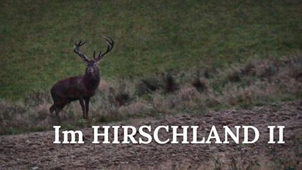 Im Hirschland II