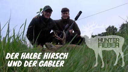 Der halbe Hirsch und der Gabler