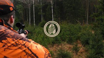 Saisonabschluss im Reilmann-Forst - Drückjagd 2020