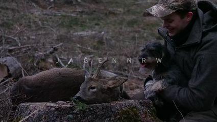 Jagdpolitik im Fokus - Bockjagd im April