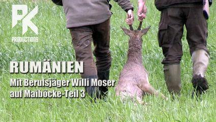 RUMÄNIEN - Teil 3 - Mit Berufsjäger Willi Moser auf Maiböcke